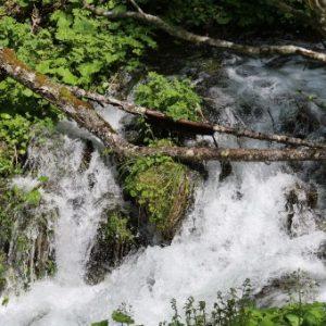 Rivière de montagne en cascade